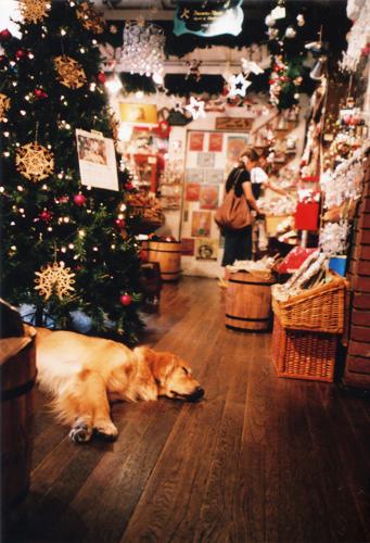クリスマス屋さんで