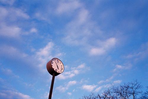 根岸森林公園の時計