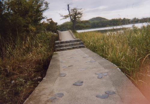 池へ続く道