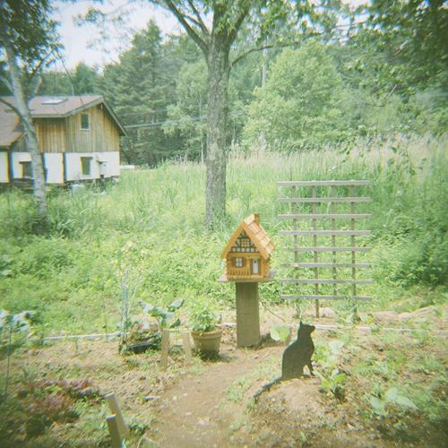 ある店の庭