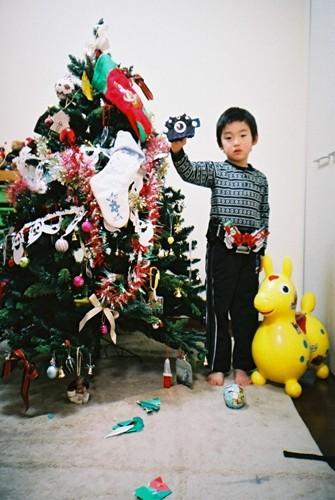 クリスマスツリーと一緒に