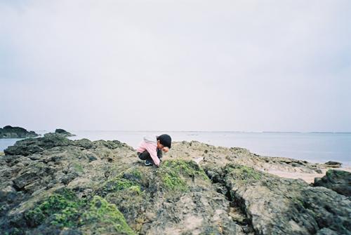 奄美大島 カニ探し