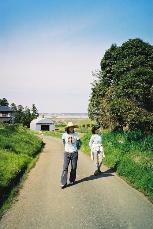 印旛沼を望む