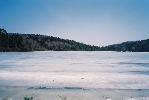 氷の白駒池