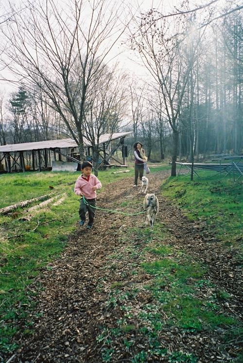 原村で犬の散歩