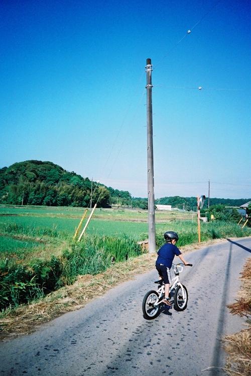 印旛村の道