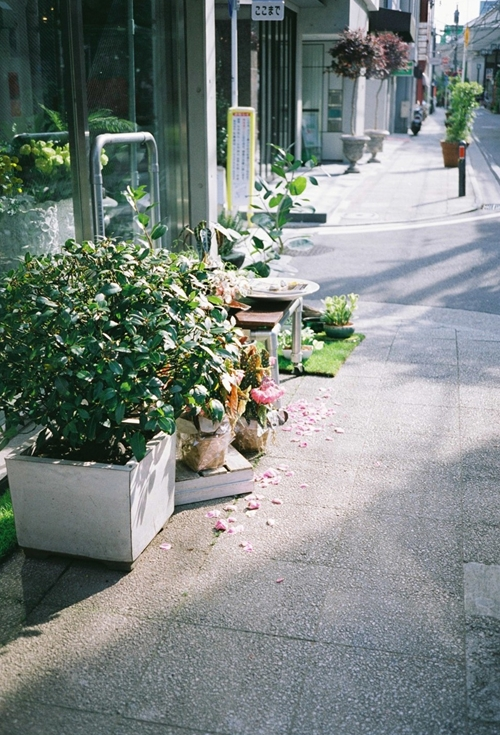 元町の花屋
