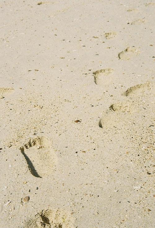 王子の足跡