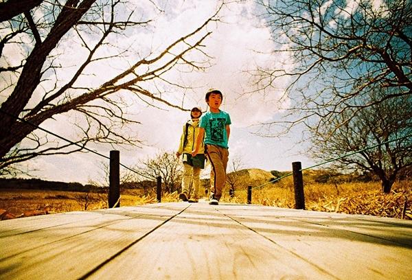 八島ヶ原湿原を歩く