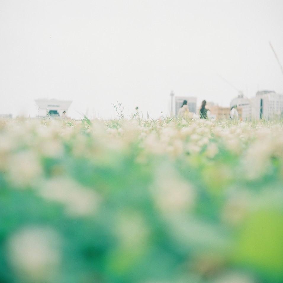 YASHICA FLEXっていう二眼カメラです。