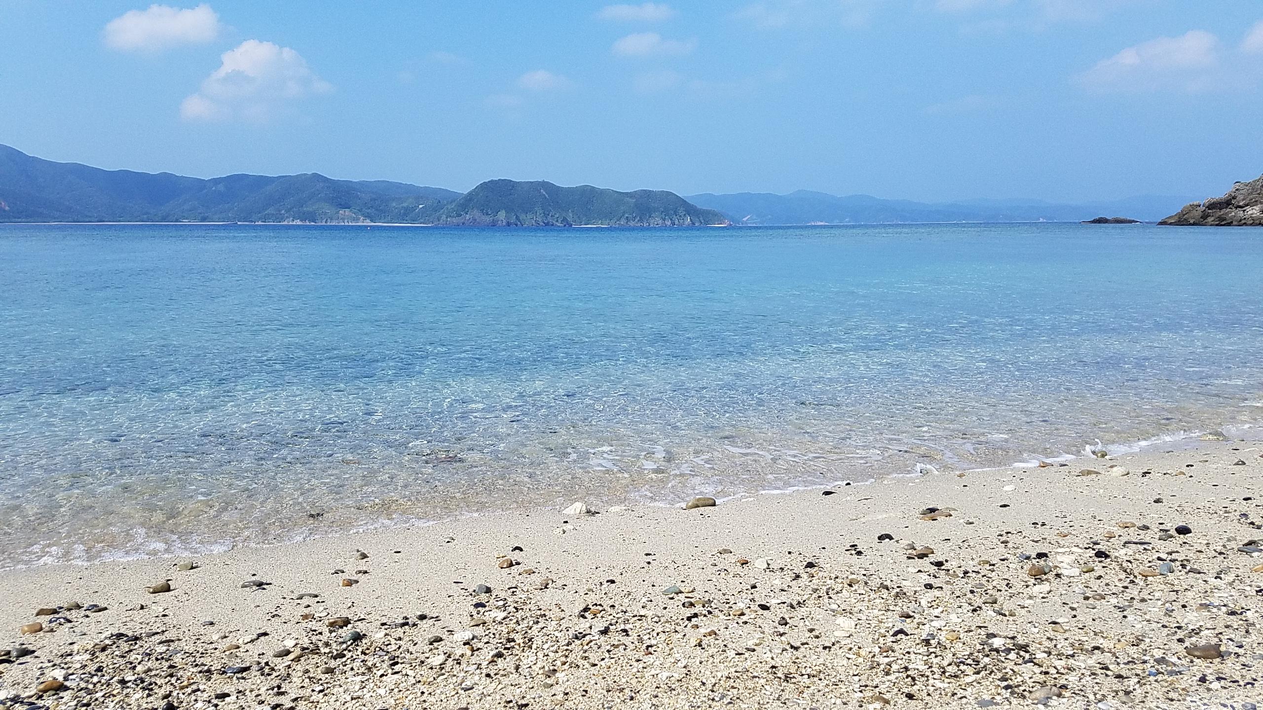 奄美大島出張。